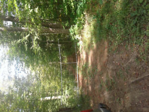 50 acres for sale.  Lots of hardwoods and åa pond.