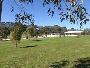 Classic Lifestyle Property on 7 acres Clare Area Preview