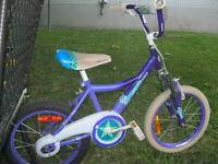 Deux vélos pour fillettes