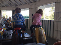 Wanted: Part-time nanny in SW Calgary