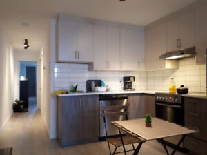 Fully Furnished 1 bedroom Apt, ready Feb 1st, 22min metro to DT