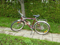 Bicycle Riley pour homme
