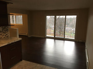 BACHELOR Apartment for Rent London Ontario image 5
