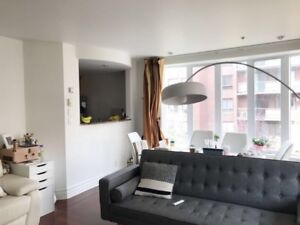 Fully furnished spacious 2 bedrooms condo for rental in downtown