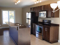 Beautiful & Modern 2 bdm duplex **AVAILABLE FEB. 1st**