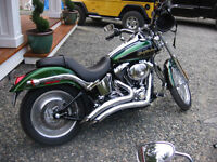 Dragonfly classic Harley colour, Deuce