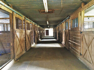 Horsebarn and Paddocks for rent