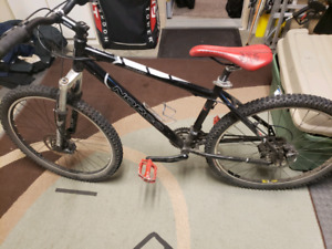 Norco Charger medium