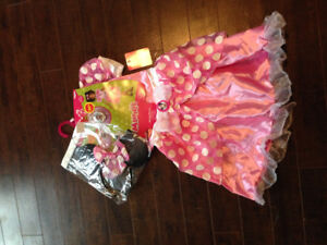 Minnie Mouse dress up costume for sale !
