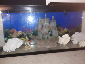 Aquarium as vendre