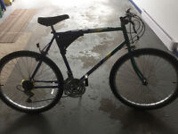 18 speed protour bike in excellent condition