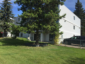 Renovated Southgate 2 Bedroom Apartment - March Free Rent
