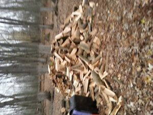 splitter for hire, all yor firewood needs looked after Peterborough Peterborough Area image 1