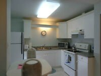 Bonnie Doon(safe&central)furnished lwr suite one 35+ non smokng,