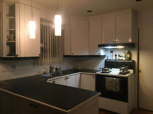 Kitchen cabinets/counter/stove/dishwasher