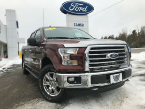 2016 Ford F-150 XLT w/ XTR PACKAGE-ACCIDENT FREE