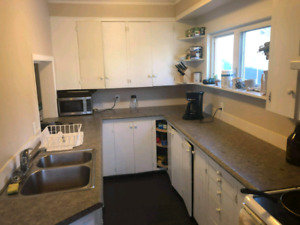Large 3 Bedroom for May 1st Beside Dal