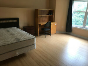 South End Large furnished Bedroom for Rent