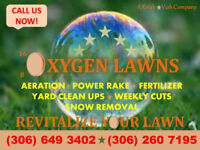 OXYGEN LAWNS - AERATION ONLY - $40 - SEE OTHER PROMOS