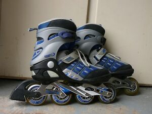 Infinity Magnesium Alloy Roller blades Kitchener / Waterloo Kitchener Area image 1