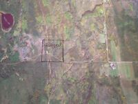 40 ACRES OF VACANT LAND