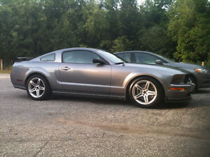 2007 Ford Mustang GT Coupe (2 door)