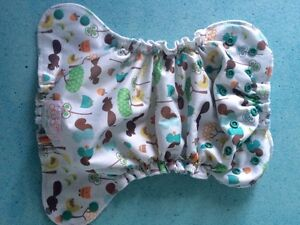 2 cloth diapers, 1 cover (AMP, BG and Thirsties)
