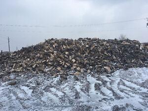 Firewood Liquidation.