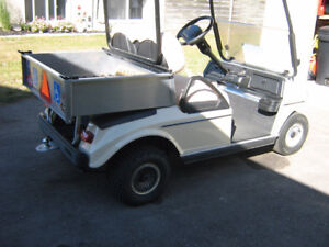 MODIFIED GOLF BUGGY