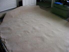 Cream Carpet Brand New