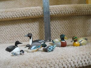 Collector and Decorative Ducks