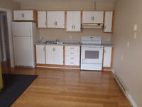 Bright and clean one bedroom above ground apartment
