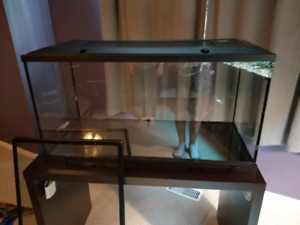 40g terrarium with stand