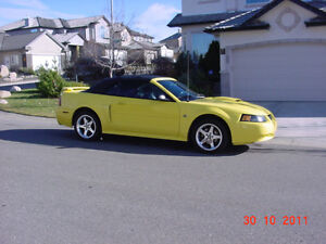 2003 Ford Mustang GT Convertible Coupe (2 door)