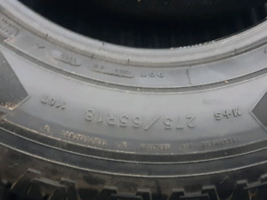 Goodyear fortitude tires