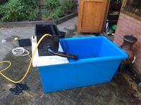Fish breeding/incubation tank for kio
