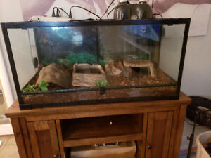 National Geographic Terrarium $200 O.B.O