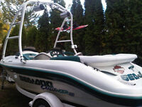 fun boat great stereo low hrs.18 ft. seats 8 , 250 260 0837
