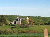 Beautiful Heritage Home/Hobby Farm for sale