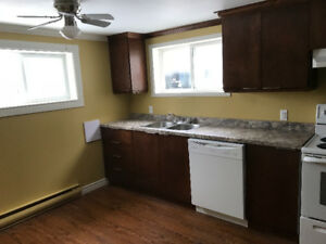 AVAILABLE FEB 1st TOTALLY RENOVATED 1 bedroom Mt Pearl