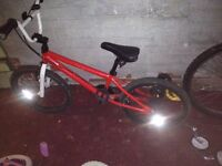 For Sale BMX And Mountain Bike