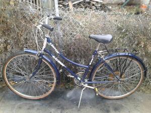 Raleigh Lenton Cruiser Bike, New U-Lock for extra $20
