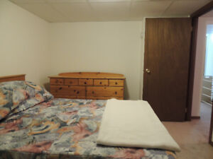 WANTED FEMALE U OF M STUDENT FOR SPACIOUS RENTAL near U of M