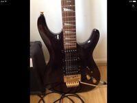 Shine guitar and amp