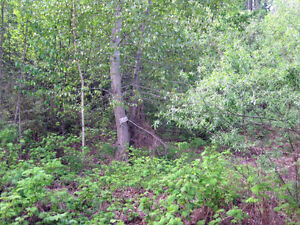 .46 acre Lake and Mountain View Lot
