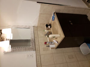 1bedroom basement Private room for Rent
