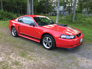 2003 Ford Mustang Mach 1 **SHOWROOM CONDITION **