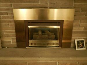 InstaFlame HE20 Natural Gas Fireplace Insert w. Cap/some liner