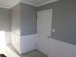 Painting PLUS and Home Renovation 647-620-2041