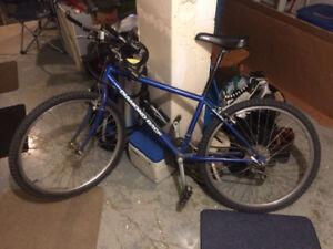 FOR SALE: Diamond Back 21 spd Mountain bike in great shape,